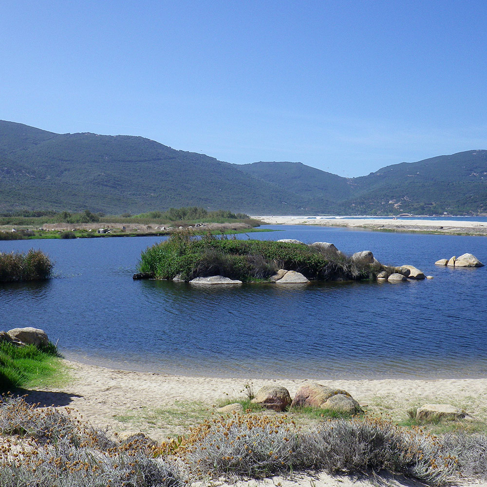 Randonnée Faune et Flore Corse